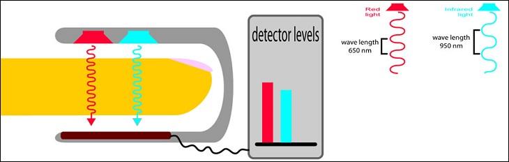 Nguyên lý hoạt động máy đo nồng độ oxy SPO2